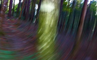 Fotoexperimente